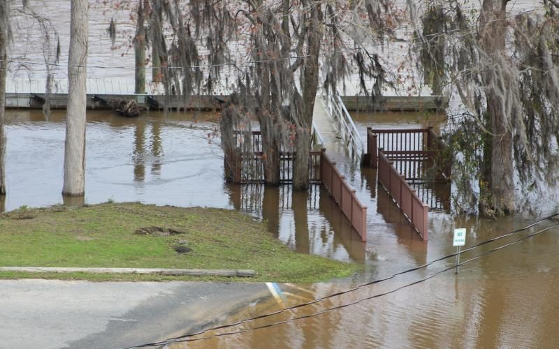 Although the walkway to the floating dock at Jaycee Landing was still submerged Tuesday, floodwaters on the Altamaha continue to recede this week. The water level at the Doctortown gauge is forecast to be below 14 feet by tomorrow, and sites up river have been back down into the minor-flooding zone for several days.