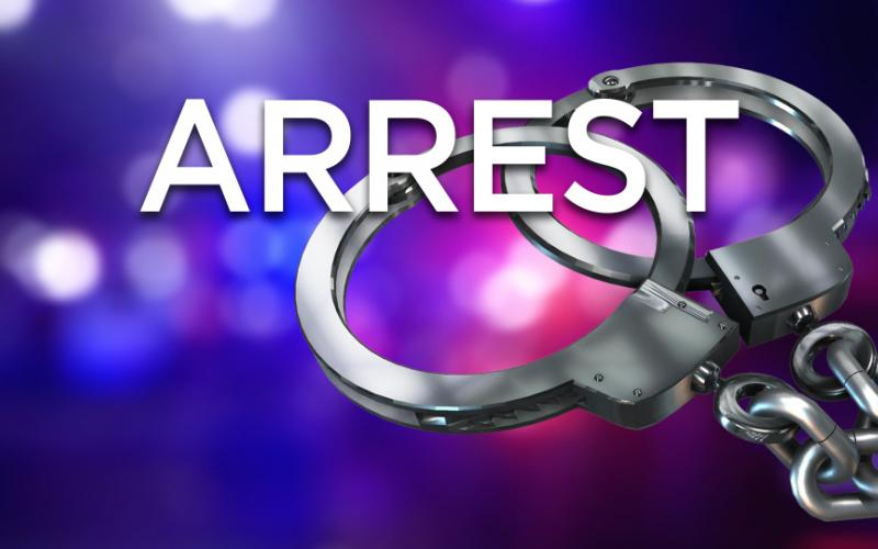 Arrests in sting operation.